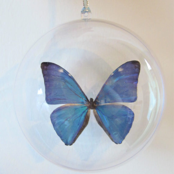 Real Blue Peruvian Morpho Marcus Adonis Butterfly Christmas Ornament Ball Globe Round Gift