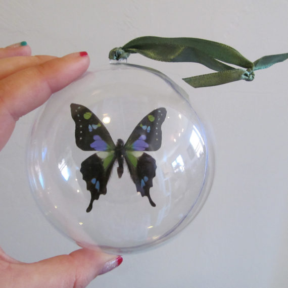 Real Purple Green Weiskei Butterfly Christmas Ornament Ball Globe Round Gift